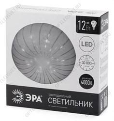 Светильник РСУ-17-250-001 со стеклом IP53 (1000383)