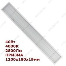 Ecola T8 Premium G13 LED 12,5W 220V 6500K с поворотными цоколями (матовое стекло) 605x28 (упак.инд.ц