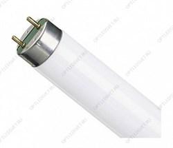 Лампа линейная люминесцентная ЛЛ 8вт NTL-Т4 860 G5 дневная (94112 NTL-T4)
